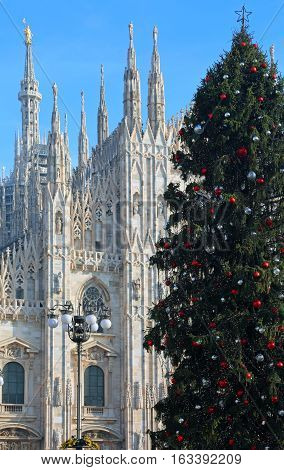 Christmas Tree In Front Of The Cathedral Of Milan In Italy