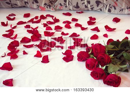bouquet from red roses and scattered petals on a bed with white sheet and two pillows
