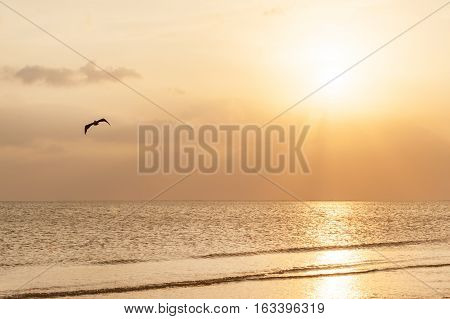 Sunset on pristine sandy beach of Fort Meyers, Florida
