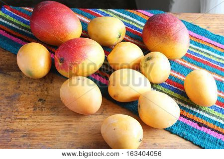Two types of whole ripe mangos with a colorful place mat on a table in Peru