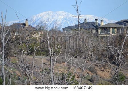 View of a snow capped Mt Baldy in the San Gabriel mountains seen from a reserve in Bolsa Chica, California