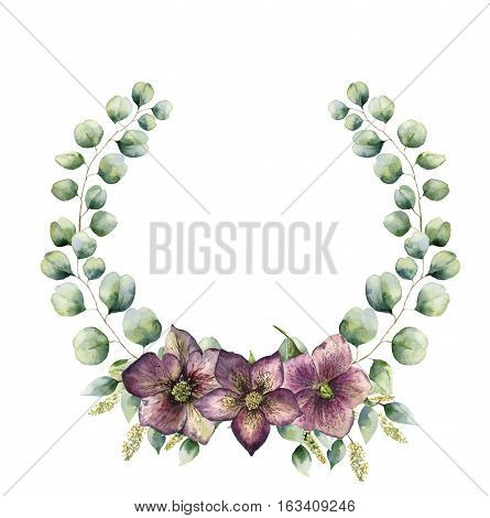 Watercolor floral wreath with eucalyptus and hellebore. Hand painted floral wreath with branches, leaves of seeded and silver dollar eucalyptus. christmas rose. For design or background.