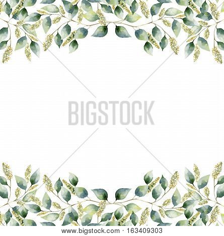 Watercolor green floral frame card with seeded eucalyptus leaves. Hand painted border with branches and leaves of eucalyptus isolated on white background. For design or background.