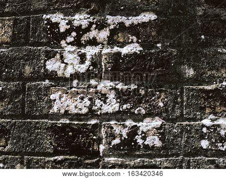 Fragmento de pared de ladrillos oscura con manchas de humedad y moho
