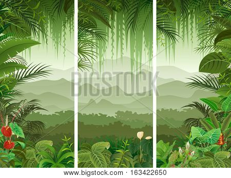 Vector illustration of 3 vertical banners set of tropical forest background