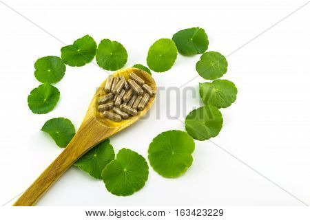 Heart shape of green Asiatic Pennywort (Centella asiatica Hydrocotyle umbellata L or Water pennywort ) and colorful pill in wooden spoon on white background