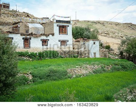 House At A Rural Village In Ladakh, India