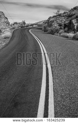 Lonely desert road - Black and White