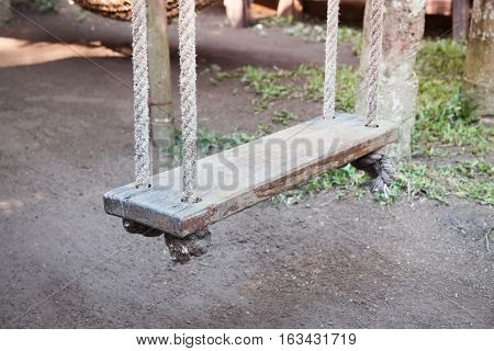 Old wood swing hanged on tree, stock photo
