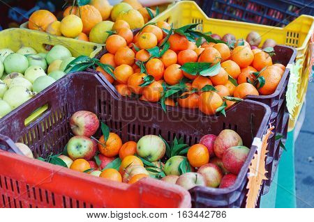 Fruit overflowing boxes on the counter of the local market tangerines oranges apples.