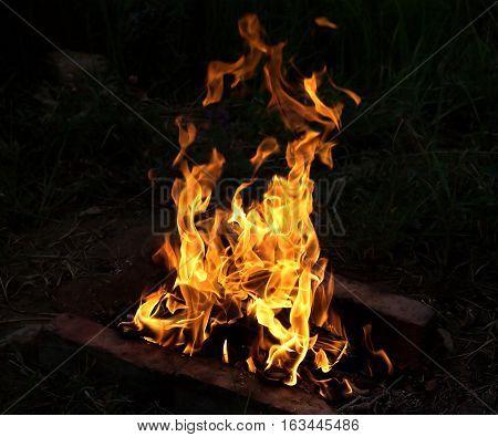 Big bright fire burning at night closeup