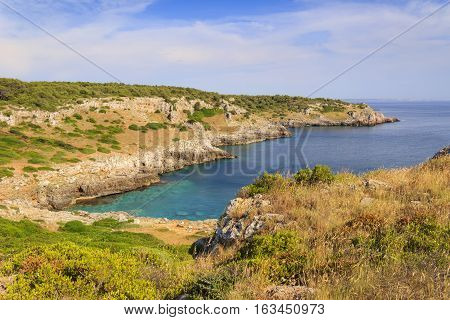 Mediterranean maquis. Salento coast: Uluzzo Bay; it' s a small natural gulf located within the protected area known as Porto Selvaggio. (Lecce).ITALY (Apulia).In the background the city of Gallipoli.