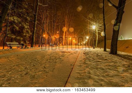 Winter night park alley view illuminated with lanterns. Snowing night. Night shot