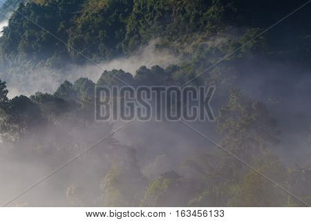Nature Landscape Of Geen Tree Mountains Of Thailand