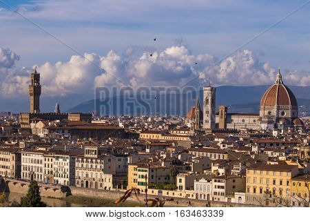 Beautiful views of Florence and Cathedral Santa Maria del Fiore, Florence, Italy. Birds flying over Florence.