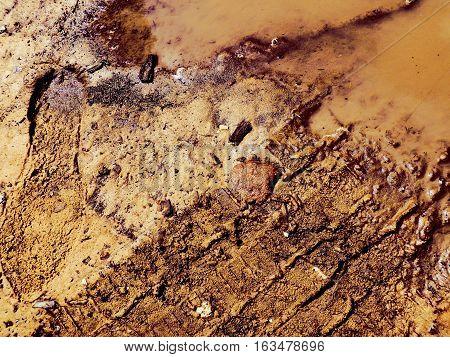 Huellas de zapato y neumático en charco de arena y agua