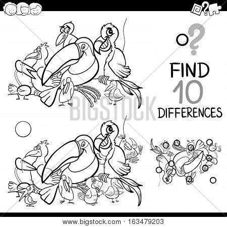 Difference Activity With Birds