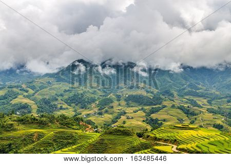 Sapa mountians hidden in the clouds with rice paddy fields in the foreground