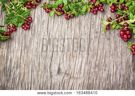 Cranberry. Berry with leaves. Food background Top view