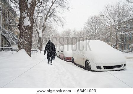 Snowstorm in Montreal. Pedestrian on De Lorimier Avenue.