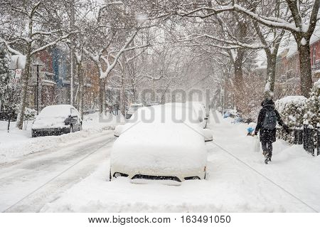 Snowstorm in Montreal with cars covered in snow (2016)
