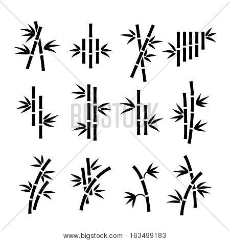 Bamboo vector icons. Asian bamboo plant stalks and leaves isolated on white background. Branch of asian bamboo black silhouette illustration