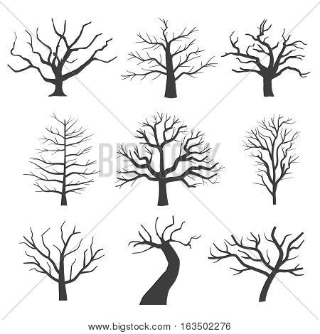 Dead tree silhouettes. Dying black scary trees forest vector illustration. Natural dying old tree of set