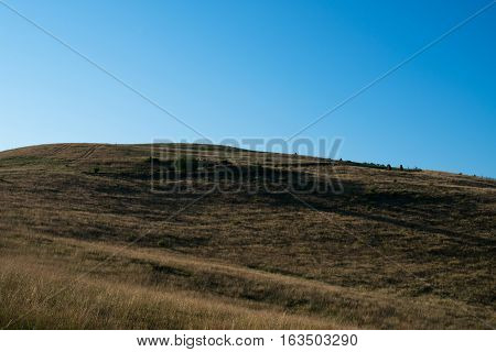 The mountainside overgrown with grass in the Ukrainian Carpathian Mountains