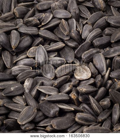 delicious sunflower seeds roasted they are useful and people like them to click