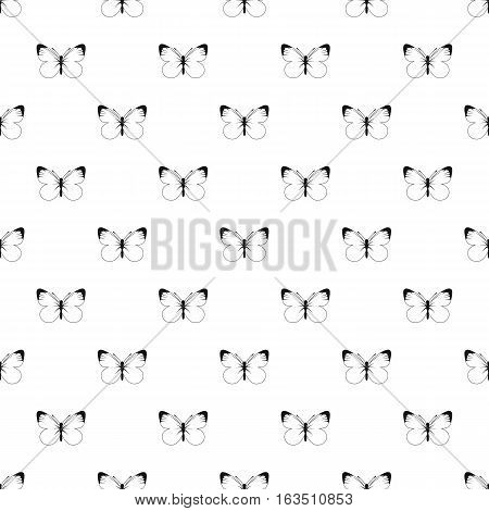 Butterfly with white and black wings pattern. Simple illustration of butterfly with white and black wings vector pattern for web