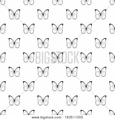 Insect butterfly with white and black wings pattern. Simple illustration of insect butterfly with white and black wings vector pattern for web