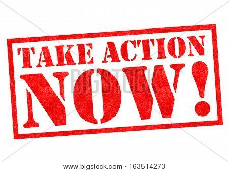 TAKE ACTION NOW! red Rubber Stamp over a white background.