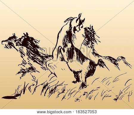 Black sketch of a wild herd of horses galloping in a field