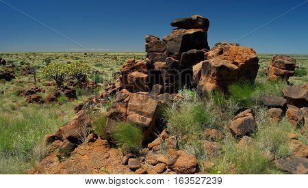 Quiver tree or kokerboom forest and giants sports ground near Keetmanshoop Namibia