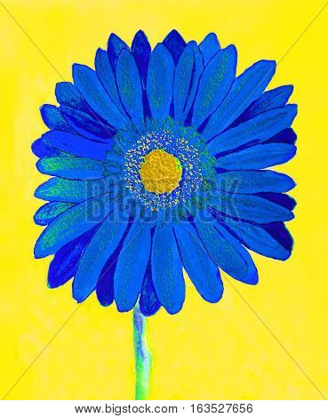 Blue gerbera flower on yellow background watercolor painting.