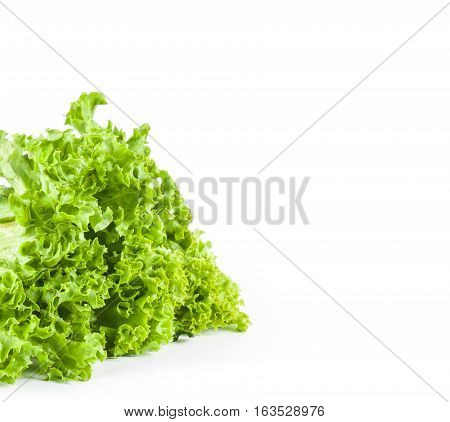 Green leaf salad isolated on white background. Food ingredients