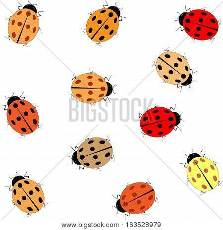 Ladybug card. Illustration ladybug on white background design element. Modern stylish abstract texture. Colorful template for prints textiles wrapping wallpaper website etc. Vector illustration