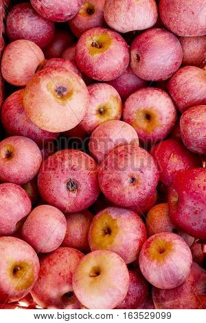 Italian Typical Apples