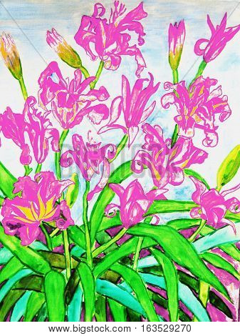 Painting watercolors: pink daily lilies.