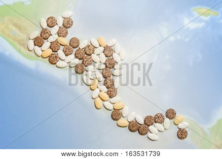 Pills in a shape of a central America