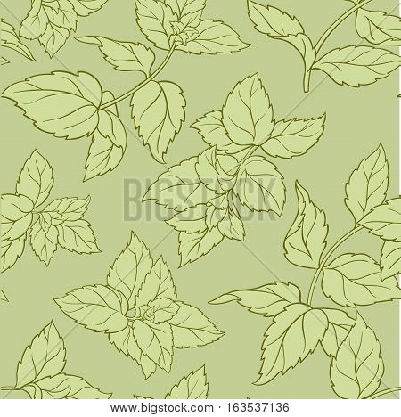 peppermint vector seamless pattern on green background