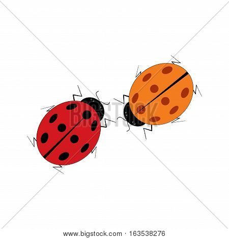 Ladybird isolated. Illustration ladybug on white background. Cute colorful sign red insect symbol spring summer garden. Template for t shirt apparel card poster Design element Vector illustration