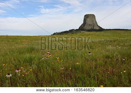 Devils Tower National Monument Wyoming with prairie forground