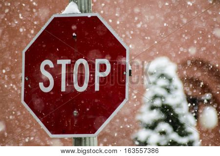 Stop Sign in Winter Snowstorm Polar Vortex Weather Changes conceptual image for safe driving to avoid accidents in low visibility conditions snowing with snow covered tree in background during blizzard