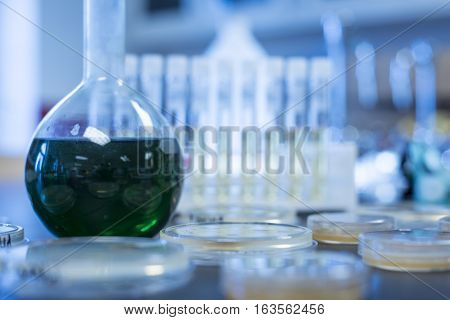 Scientific laboratory with a flask filled with green liquid and petri dishes filled with a yellow gel substance containing bacteria, and a blurry background with scientific materials, test tubes short and long in test tube racks filled with substances.