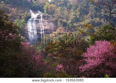 Siriphum waterfall at National park in North of Thailand. ** note select focus with shallow depth of field:ideal use for background.