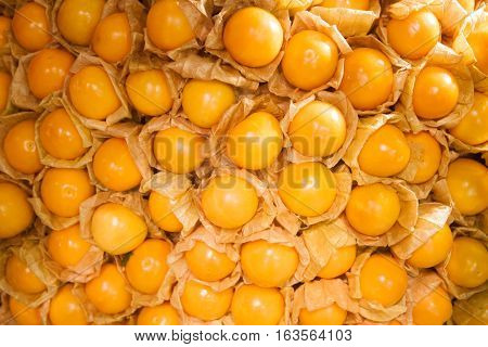 Abstract background of cape gooseberry, stock photo