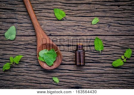 Bottle Of Essential Oil With Fresh Lemon Balm Leaves In Spoon Setup With Flat Lay On Shabby Wooden T