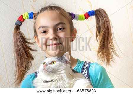 Portrait of a 11 year old girl with two funny ponytails of hair elastics holding the cat in her arms close view