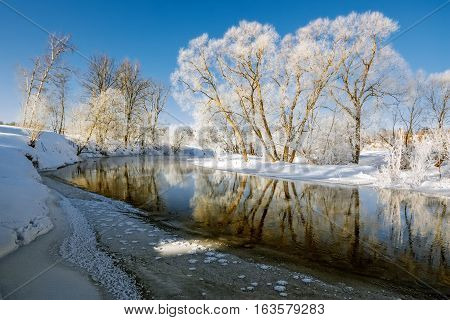 Snow covered trees at the winter river in the morning